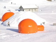 Igloo form